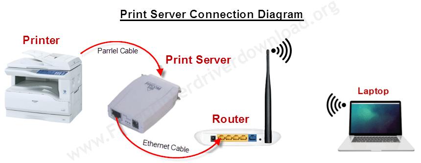 Sharp ar-5316e Print Server connection diagram