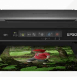 Epson XP 255 Driver Download